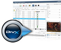 DVD to DivX converter